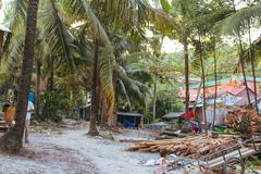 Drzewka palmowe i biała piaskowata plaża fotografia stock