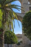 Drzewka palmowe i cytrusów drzewa w tle szczegół akwedukt - średniowieczni wodociąg, jeden główni punkty zwrotni ea zdjęcie royalty free
