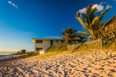 Drzewka palmowe i plażowy dom na Jupiter wyspie, Floryda Zdjęcie Stock