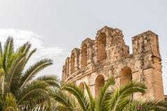 Drzewka palmowe i Romański Amphitheatre El Djem, Tunezja, Afryka zdjęcia stock