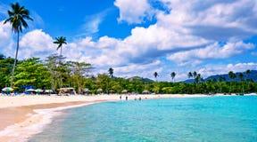 Drzewka palmowe i słońc łóżka na Rincon plaży republika dominikańska Fotografia Royalty Free