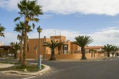 Drzewka palmowe i ulica Zdjęcie Stock
