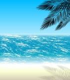 Drzewka palmowe na tle morze Fotografia Royalty Free