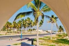 Drzewka palmowe od okno Zdjęcia Stock