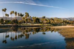 Drzewka palmowe odbija w misi zatoczce w Santa Barbara, Califo Zdjęcia Stock