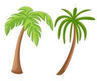 Drzewka palmowe odizolowywający na białym tle Pięknego vectro palmy drzewa ustalona ilustracja Obraz Stock