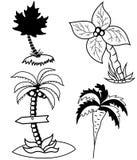 Drzewka palmowe ustawiający Obrazy Royalty Free