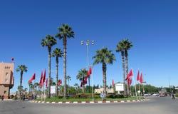 Drzewka palmowe w mieście Fotografia Stock