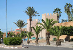 Drzewka palmowe w mieście Obraz Royalty Free
