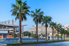 Drzewka palmowe w rzędzie fotografia royalty free