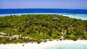 Drzewka palmowe w wyspie Fotografia Royalty Free