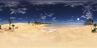 Drzewka palmowe z rzędu Obrazy Royalty Free