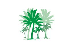 Drzewka palmowe z trawy plaży pojęcia projekta wektorowym elementem dla sieci i druku Fotografia Royalty Free