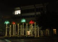 Drzewka palmowe zaświecali up dla bożych narodzeń na Daniel wyspie Fotografia Royalty Free