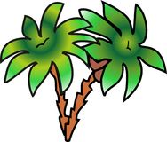 drzewko palmowe Obraz Stock