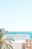 Drzewko palmowe, budynki i morze, Obrazy Stock