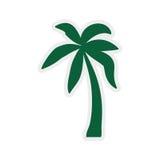 Drzewko palmowe ikona Natury i rośliny projekt gdy dekoracyjna tło grafika stylizował wektorowe zawijas fala Obraz Stock
