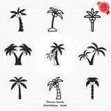 Drzewko palmowe ikony set Obrazy Royalty Free