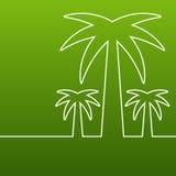 Drzewko palmowe kreskowa sylwetka Wektoru zielony abstrakcjonistyczny tło z Zdjęcie Royalty Free