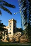 Drzewko palmowe liścia wiosny hiszpański bokeh, Walencja Obraz Stock
