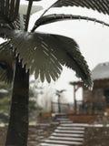 Drzewko palmowe lodowa burza fotografia stock
