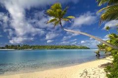 Drzewko palmowe nad laguną, Aitutaki Kucbarskie wyspy Zdjęcie Royalty Free