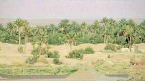 Drzewko palmowe oaza w daleko Obraz Stock