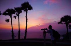 Drzewko palmowe sylwetka na pięknym zmierzchu tle obraz royalty free