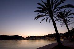 Drzewko palmowe wakacje miejsce przeznaczenia Obrazy Royalty Free