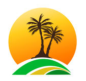 Drzewko palmowe wizerunek Obrazy Royalty Free