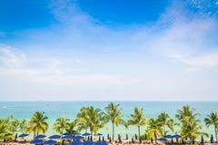 Drzewko palmowe z pięknym seascape Zdjęcie Stock