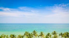 Drzewko palmowe z pięknym seascape Fotografia Royalty Free