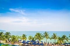 Drzewko palmowe z pięknym seascape na tle Zdjęcie Royalty Free