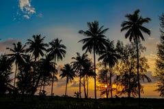 Drzewko palmowe zmierzchu sylwetka przy tropikalnym kurortem Zdjęcie Royalty Free