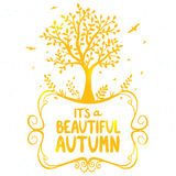 Drzewna jesień Obrazy Stock