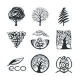 Drzewna logo kolekcja Obrazy Stock