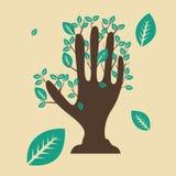 Drzewna ręka Obrazy Stock