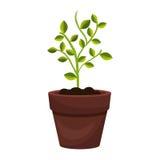 Drzewna roślina kultywuje ikonę royalty ilustracja