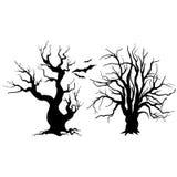 Drzewna sylwetka z liśćmi na białym tle Zdjęcie Stock
