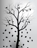 Drzewna sylwetka z tłem blask księżyca zdjęcie stock