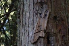 Drzewna sztuka obraz stock
