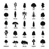Drzewne ikony ustawiać, prosty styl ilustracji