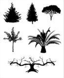 Drzewne sylwetka wektoru ilustracje Obraz Stock