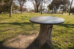 Drzewnego bagażnika stół, outdoors Zdjęcie Royalty Free