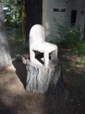 Drzewnego fiszorka krzesło z światłem słonecznym Fotografia Royalty Free