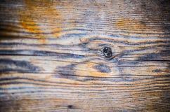 Drzewnego fiszorka wzór na szalunek powierzchni w horyzoncie Obrazy Royalty Free