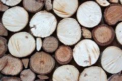 Drzewnego przekroju poprzecznego mozaiki Dekoracyjny panel zdjęcie stock
