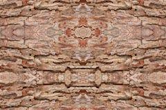Drzewnej barkentyny tekstury wzór drewniana skórka dla tła obrazy stock
