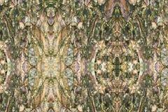 Drzewnej barkentyny tekstury wzór drewniana skórka dla tła fotografia stock