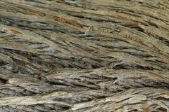 Drzewnej barkentyny zakończenie up Zdjęcie Stock
